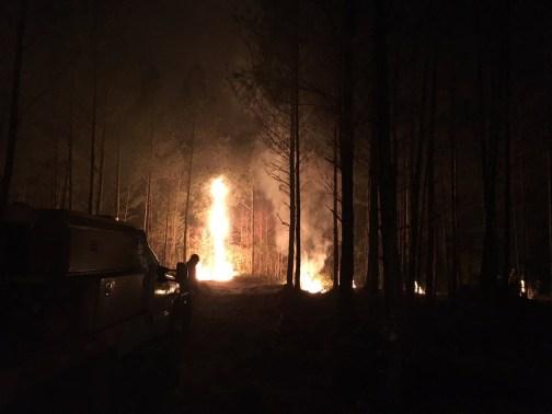 wildfire at night Bimini