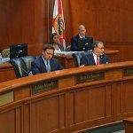 The Cabinet as Nikki Fried spoke. (© FlaglerLive via Florida Channel)