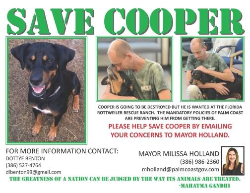 save cooper flyer