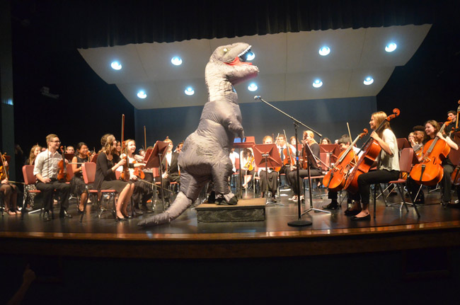 Look who turned up at the Flagler Youth Orchestra's last concert of the season at the Flagler Auditorium Wednesday evening: Conductor Joe Corporon donned a dinosaur suit to conduct the theme from 'Jurassic Park,' one of two dozen pieces performed by four orchestras, from relative beginners to well advanced students. The concert also featured a farewell to 12 graduating seniors, each of whom received a $200 college scholarship from the orchestra. Superintendent Jim Tager, School Board member Maria Barbosa and Sheriff Rick Staly were among the audience, a near full house. (© FlaglerLive)