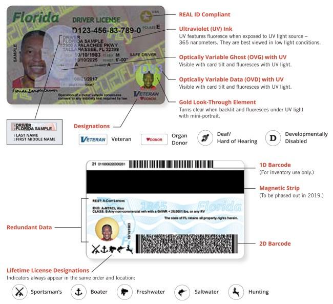 florida driver's license