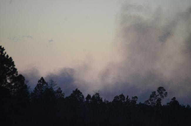 wildfire 304