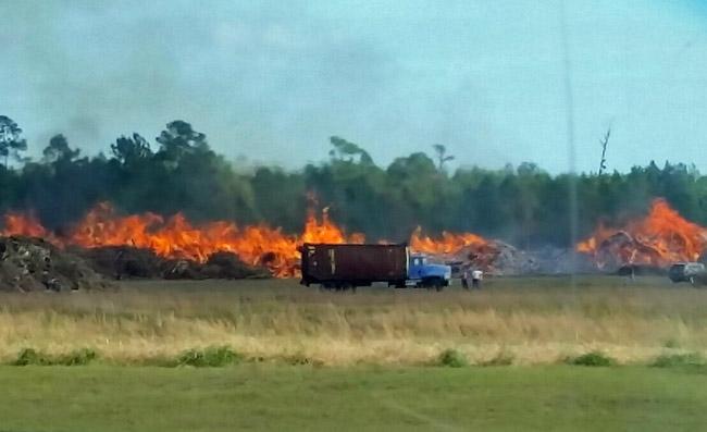 hurricane matthew debris burn