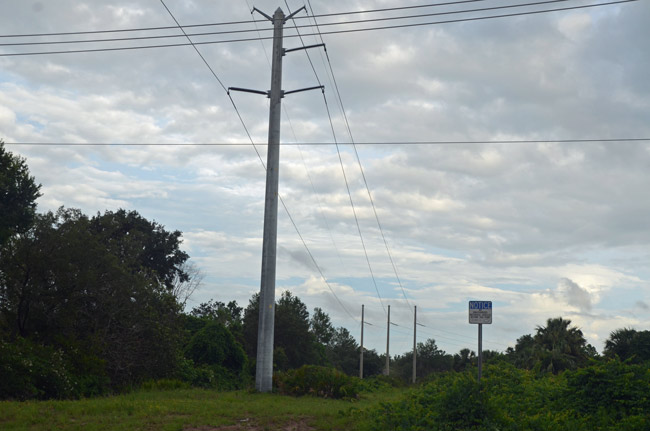 'I was scared walking the path,' says Palm Coast City Council member Heidi Shipley of the proposed foot path under FPL power lines, through the heart of the F Section, ending up at Matanzas High School. (© FlaglerLive)