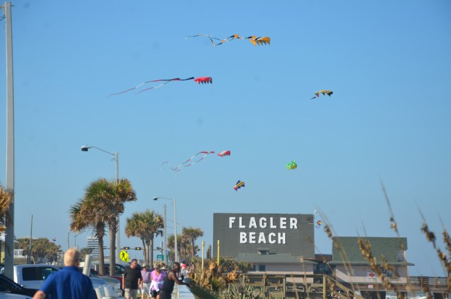 If Hitchcock had shot 'The Birds' in Flagler Beach. The scene there Saturday afternoon. Click on the image for larger view. (© FlaglerLive)
