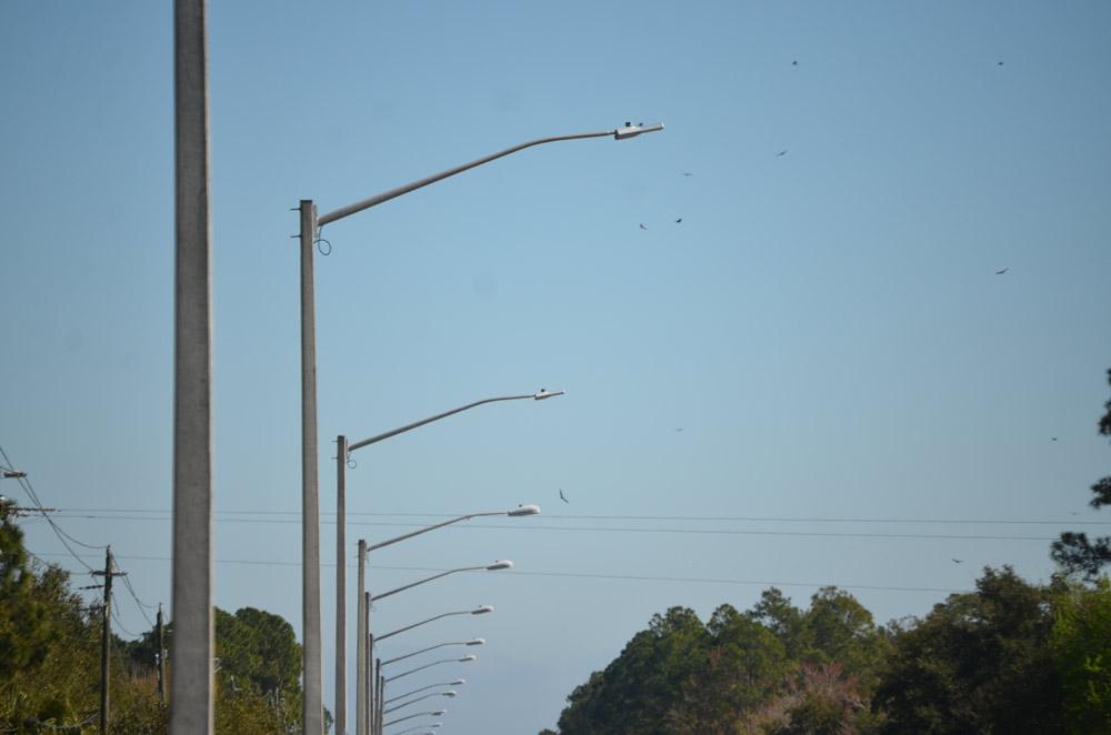 Fpl Street Light Out