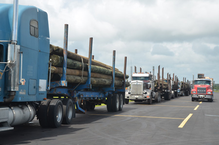 Replacement light poles at the Flagler County airport, where FPL is ramping up a staging operation ahead of Dorian. (© FlaglerLive)