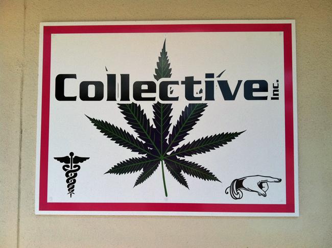 palm coast medical marijuana pot dispensaries