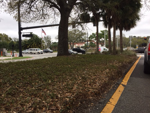 The north median at Old Kings Road near the intersection with Palm Coast Parkway is favored by panhandlers. (© FlaglerLive)