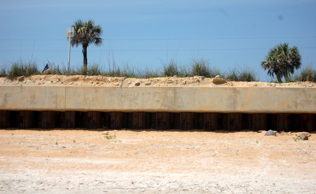 flagler beach erosion