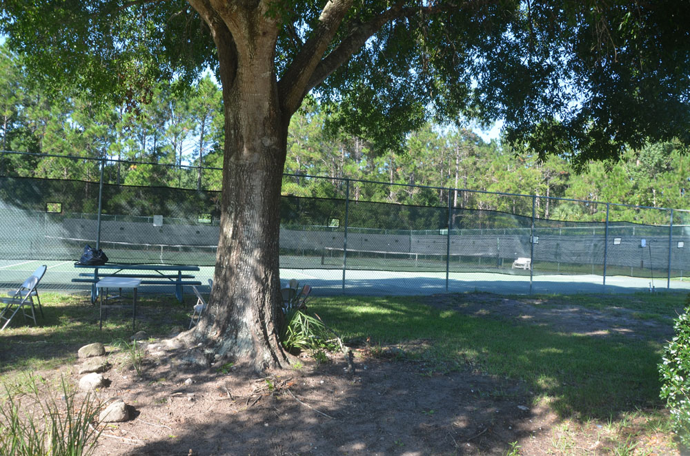 A pretty setting, but the tennis courts at the Belle Terre Swim and Racquet Club are not likely to survive whatever makeover the club will experience in the coming year. (© FlaglerLive)