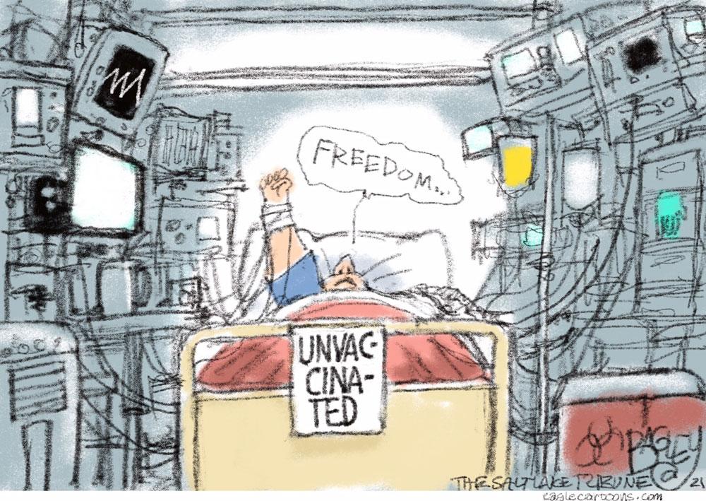 Freedumb ER by Pat Bagley, The Salt Lake Tribune