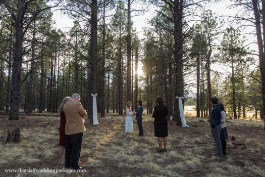 Flagstaff Forest Wedding Packages Kendrick Park