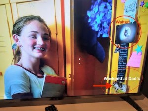 A close-up of Maya's locker shows a picture of Walter the cat and another photo from a weekend visit with her dad, where her dad took her and a sibling to a park.