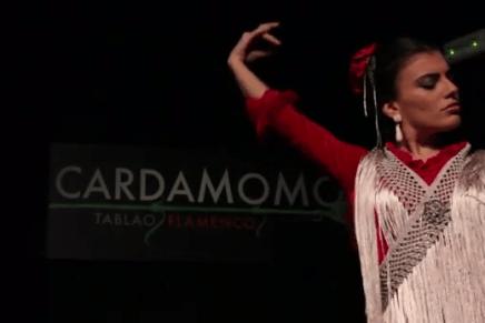 Lisi Sfair: El flamenco como patrimonio de la humanidad