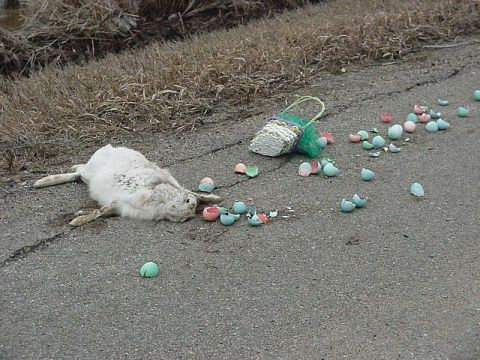 easter-bunny