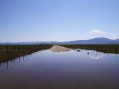 Sierra Backroads- Smithneck Road - 15 of 17