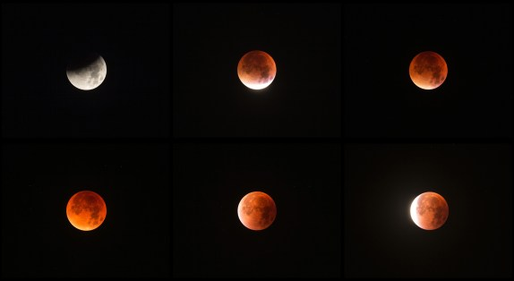 Progression of the lunar eclipse - by Mike Meynell