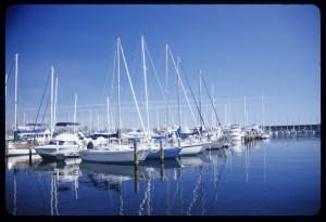 St. Pete Yacht Club harbour