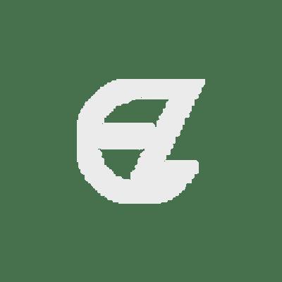enzo-silhouette