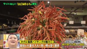 41瀧澤信秋ホテルニュー塩原