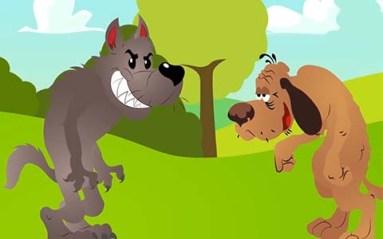 الكلب المسن والذئب