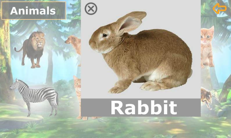 انجليزي-الصف-الأول-Rabbit