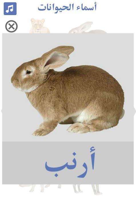 تعليم-أسماء-الحيوانات-أرنب