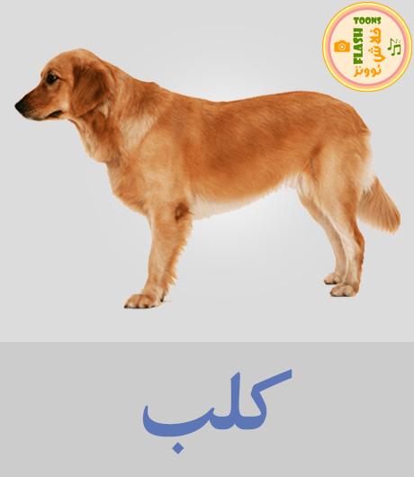 اصوات الحيوانات للاطفال - كلب