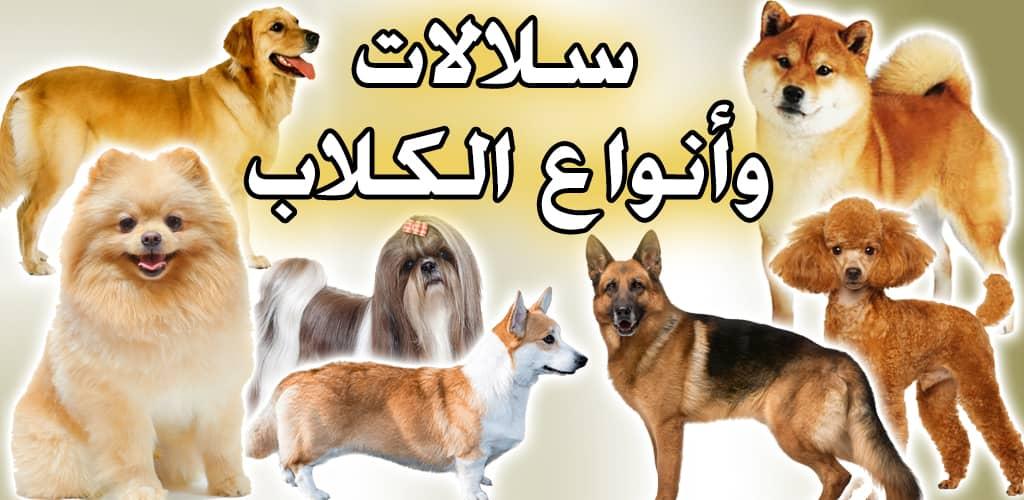 انواع الكلاب سلالات الكلاب