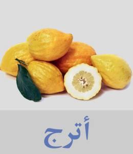 أترج أنواع الفواكه واسمائها - أسماء فواكه غريبة