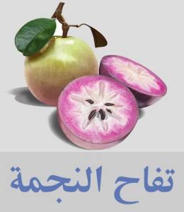 تفاح النجمة أنواع الفواكه واسمائها - أسماء فواكه غريبة