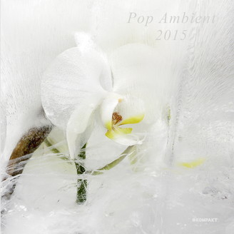 56. Kompakt - Pop Ambient 2016