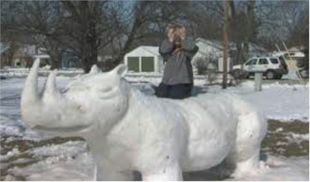 Snow Animals Ecards For Facebook