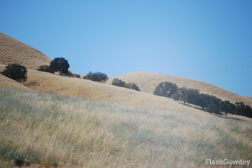 """Grapes of Wrath"" Country, California (September 2011)"