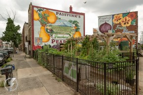 """Harry O's Passyunk Gardens is a volunteer run community garden in South Philadelphia, PA that was created in 2011 for a taping of the Rachael Ray Show. The space's mission statement says """"Harry O's Passyunk Gardens seeks to provide an inclusive green space in the heart of South Philly where neighbors and visitors can participate in urban gardening and create a community-oriented environment."""