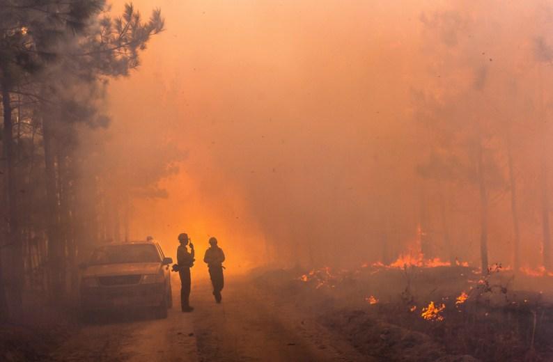 Forestry Prescribed Burn