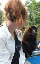 Wooly Monkey and Mirella