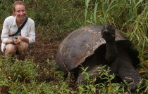 Tortoise and Monkey