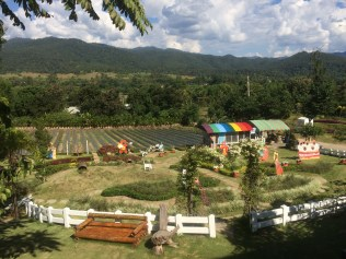Green area to chill and the strawberry farm