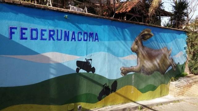 SpazioCima Alessio Bolognesi e la street art