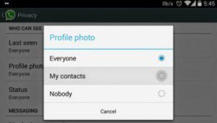 Hide profile picture in WhatsApp