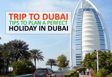 Trip to Dubai: 10 Tips to Plan a Perfect Holiday to Dubai