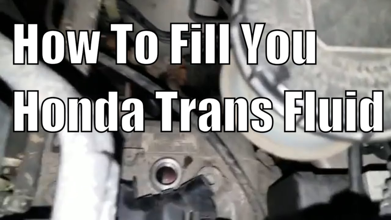 How To Fill Your Transmission Fluid Honda Odyssey