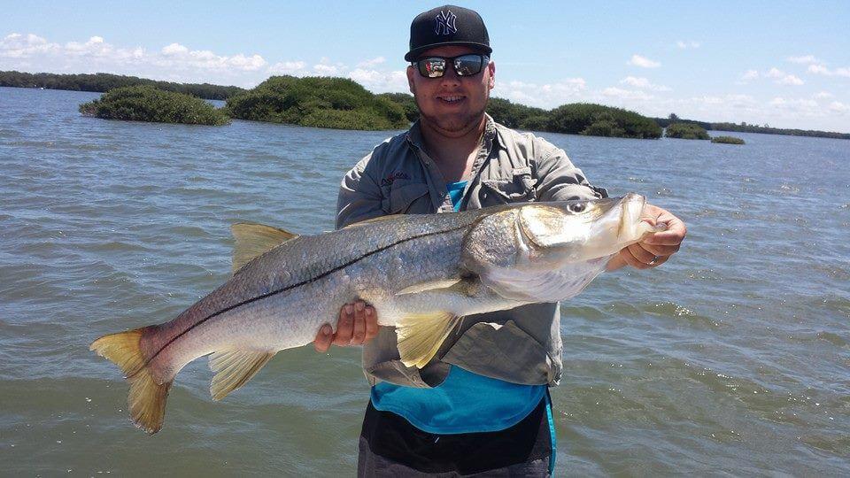 Snook Fishing Techniques Sarasota Florida