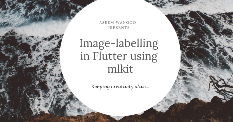 ML Kit and Image Labeling in Flutter