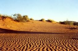 Kalahari Red Dirt