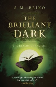 book cover for the brilliant dark by sm beiko