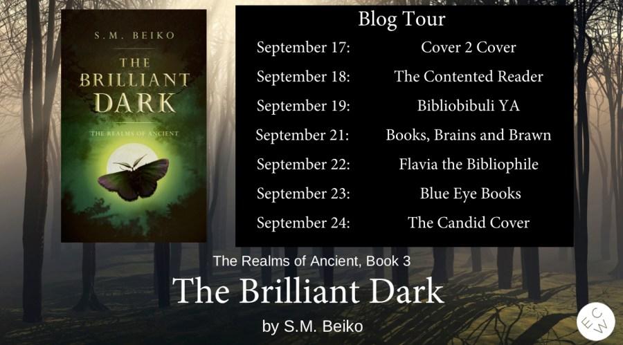 the brilliant dark by sm beiko blog tour header