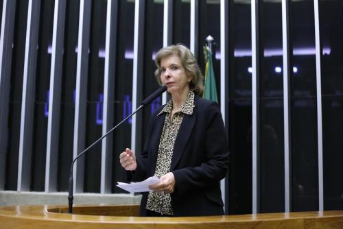 Foto: Deputada federal, Yeda Crusius tomou posição sobre temas da Reforma Política. foto Divulgação/Camara dos Deputados